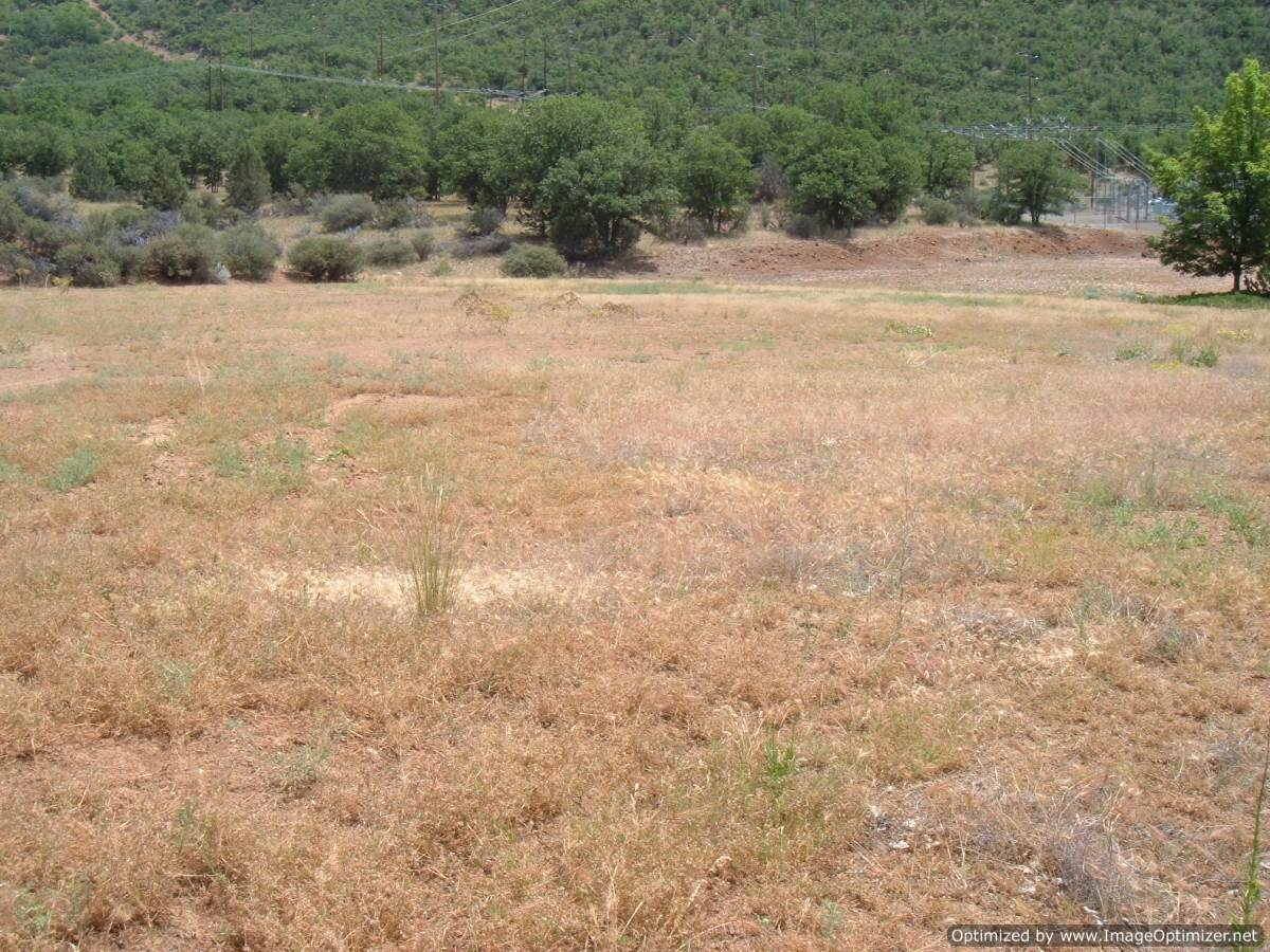 Northern California Commercial Real Estate land for sale